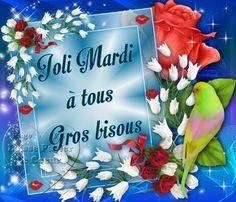 Bon Mardi, Beautiful Birds, Good Morning, Tuesday, Gifs, Good Morning Picture, Good Night, Proverbs, Welcome