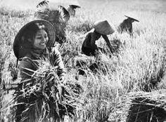 Người phụ nữ Việt Nam xưa và nay tuy đã có sự thay đổi nhiều cả về hướng suy nghĩ lẫn hành động nhưng tựu chung họ vẫn là những con người mang đầy đủ những tố chất của hình mẫu phụ nưc lý tưởng, họ đảm việc nhà nhưng cũng rất giỏi việc nước.
