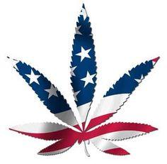 Legalize it in America!