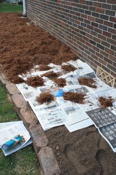 Put the newspaper over the dirt pages thick and then covered it with mulch. The newspaper will prevent any grass and weed seeds from germinating, but unlike fabric, it will decompose after about 18 months. By that time, any grass and weed seeds that we Modern Landscaping, Backyard Landscaping, Inexpensive Landscaping, Backyard Ideas, Pine Straw Landscaping, Cheap Landscaping Ideas For Front Yard, Front Walkway Landscaping, Residential Landscaping, No Grass Backyard