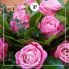 Rosas color rosa para un día especial. Las encontrarás en Alfabia, la floristería de Platea Madrid.