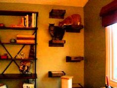 MoorePet Wall Walk Step is a wall mounted pet platform. It is designed for pets up to 30 lbs., and is mounted to the stud in your wall. Cat Wall Shelves, Cat Exercise, Animal Projects, Catwalks, Ladder, Wall Mount, Platform, Pets, Furniture