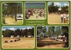 Afbeelding van https://sleurhutinbakkum.files.wordpress.com/2010/05/ansichtkaart-camping-bakkum1.jpg.