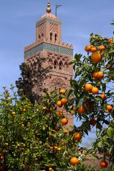 Marrakech Morocco, Marrakesh, Muslim Culture, Ras El Hanout, Beautiful Mosques, Morocco Travel, Islamic Architecture, Desert Life, Moorish