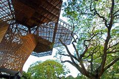 Orquideorama / Plan B Architects + JPRCR Architects, Botanical Garden, Medellín, Colombia