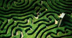 Hedge maze at Longleat House near the town of Warminster, UK