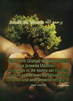 Ibn Utheimin Fatawa Islam