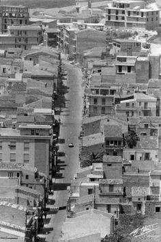 Cerda [1964]