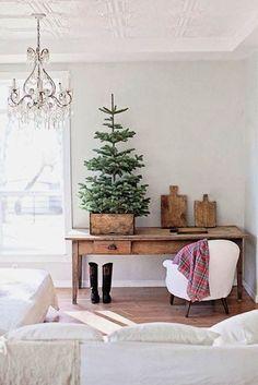 Weihnachtsbaum im Topf im alt landhaus stil