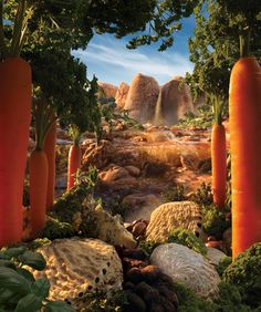 Foodscapes 3 by Carl Warner, via Behance