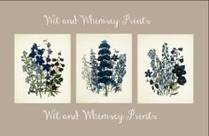 Vintage BOTANICAL Archival Print Set Home by WitAndWhimseyPrints, $27.00