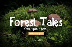 Forest Tales Type by MeHi on @creativemarket