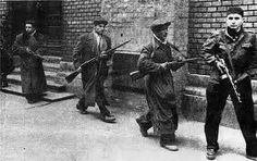 The Hungarian Revolution: 1956 Hungary History, World Conflicts, Warsaw Pact, Political Prisoners, Austro Hungarian, Budapest Hungary, Historical Pictures, Soviet Union, Cold War