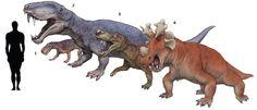 Comparativa de tamaños entre bestias pérmicas y un colega humano calvo. 1: Lycaenops, gorgonópsido teriodonto. 2: Eotitanosuchus, un biarmosúquido. 3: Gorgonops, otro gornonópsido teriodonto. 4: Estemmenosuchus, un dinocefálido. Por Satoshi Kawasaki.