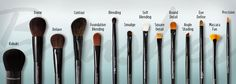 All the brushes you need to get the perfect look.
