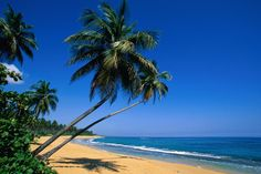 Isla Verde, Puerto Rico. Thinking of heading here for a vacation this summer. If you've been, what did you think of PR?