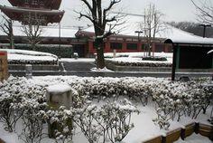 mas nieve!