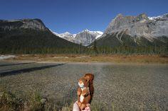 https://flic.kr/p/yNWbyY   Yoho   Walking around Emerald lake. Yoho national park, BC #mascot #mascotte #travelingmascot #travellingmascot #DexterLEcureuil #DexterTheSquirrel #peluche #stuffedanimal #Canada