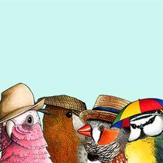 Birds in Hats