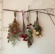 dried flowers are always so pretty. dried flowers are always so pretty. No Rain, Flower Aesthetic, Aesthetic Indie, Aesthetic Pastel, Arte Floral, My New Room, Plant Hanger, Dried Flowers, How To Dry Flowers