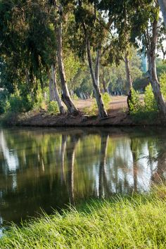The Yarkon River in Tel Aviv