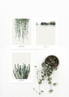 Mini art prints / Postcard set 'Botanics' printed on white 350 g.The graphics can be used as a postcard or a small artwork to frame. Paper size mm) SHIPPINGThe mini art prints come in a set of three, in a cardboard box. Postcard Layout, Postcard Art, Postcard Design, Impressions Botaniques, Boutique Deco, Deer Art, Fine Art Photo, Photo Postcards, Watercolor Print