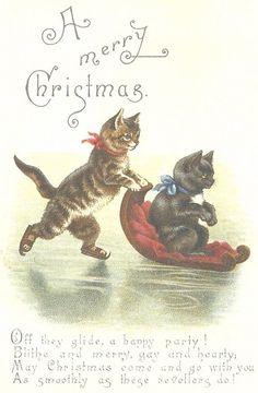 Christmas Cats - A Merry Christmas, Ice Skating