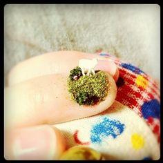 miniature garden nail , ?