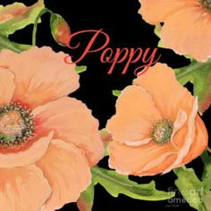 Painting - Poppy-jp2697 by Jean Plout