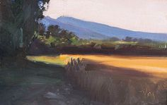 daily painting titled Evening wheatfield - postcard from provence| oil