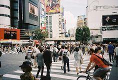 shibuya intersection, via Flickr.