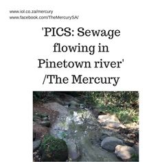 The Mercury visited the area on Wednesday and found that part of the river has been heavily polluted. In two of its sections, dams of sewage had formed. Next to the river are several large industrial sewer tanks.