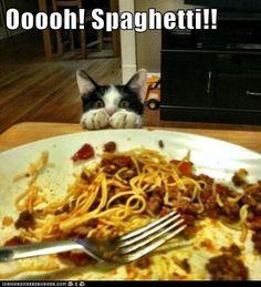 #Save $1 off Barilla #Pasta! #grocery #coupon VALID UNTIL NOV 27