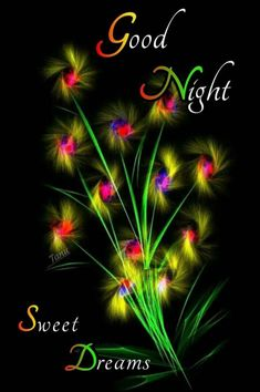 Good Night Qoutes, Good Night Love Messages, Good Night Hindi, Good Night I Love You, Hindi Good Morning Quotes, Good Night Wishes, Good Morning Picture, Good Night Moon, Good Morning Good Night