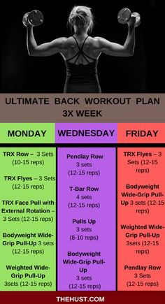 Strong back gives you strength to perform every workout without getting injured. Let's jump into the workout plan for shredded back. Back Workout Challenge, Gym Back Workout, Rugby Workout, Shred Workout, Good Back Workouts, Face Pull Exercise, Do Exercise, Excercise, Muscles In Your Back