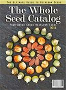 How Long Do Seeds Really Last? (Plus, a Cheat Sheet on Seed Storage Life) | Garden Betty