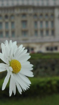 #Nature#Romania  #Palace#of#Parliament #Bucharest #Photography