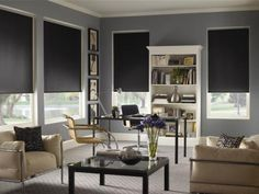 Blinds.com Gallery - Shown in color:Xlite Charcoal (blackout)