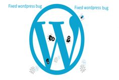 I can help you any wordpress related problem. wordpress install ,theme install, css error ,php error, plugin install, wordpress backup, backup install ,responsive. http://www.gicree.com/WordPress-and-Plugins/216/fixed-your-wordpress-error