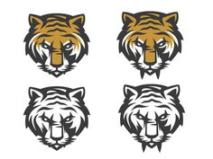 Dribbble - Saber Tooth Tiger by C A M O