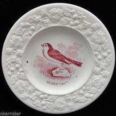 ROBIN-BIRD-Staffordshire-Childs-Plate-1840-Thistle-Shamrock-Rose-border