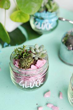 DIY Upcycling: Bunter Sukkulentengarten im Marmeladenglas | mein feenstaub
