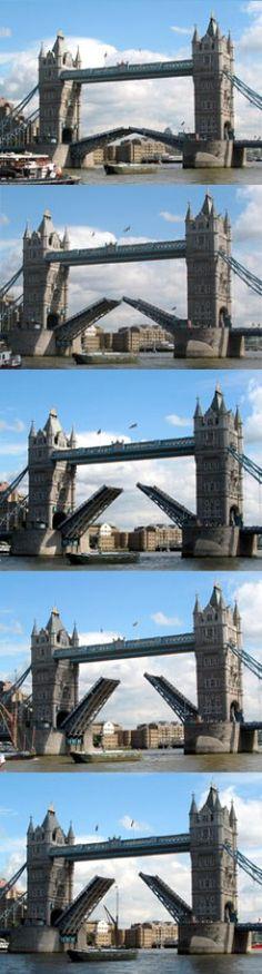 Ponte Tower, ou Tower Bridge. O vão central se divide em 2 folhas que são levantadas para passagem do tráfego fluvial. A ponte é basculante e também é pênsil. A operação das máquinas para subida dos basculantes ocorre na base de cada uma das torres. O vão entre as duas torres é de 60,960 m. Bem no alto, existem duas passagens que ligam as duas torres e que fazem a amarração necessária para suportar as forças horizontais exercidas pelos basculantes quando estes são erguidos.