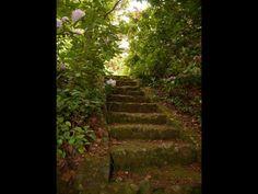 Lovely steps