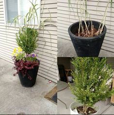 Took some bits and pieces from around the house, added a couple new plants and made a nice planter for my entrance. Repurpose, No Time For Me, Entrance, Recycling, Planters, Gardening, Couple, Nice, Creative