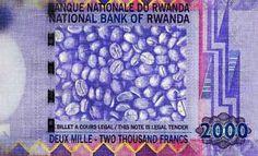 #CuriousCoffee En Rwanda el billete de 2000 francos lleva de fondo una foto de #café verde