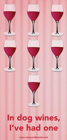 In dog wines, I've had one. #winehumor #vinoplease #WineMemes