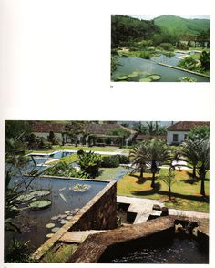 another one from Fazenda Vargem Grande by Roberto Burle Marx