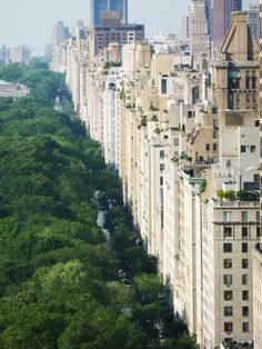 Central Park & Fifth Avenue - Upper East Side, NYC