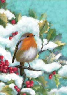 Leading Illustration & Publishing Agency based in London, New York & Marbella. Xmas Pictures, Xmas Pics, Robin Bird, Christmas Graphics, Winter Art, Vintage Postcards, Garden Art, Scene, Birds